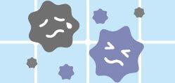 強力な抗カビ力(湿式、乾式クリア)イメージ